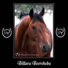 Billara Beersheba