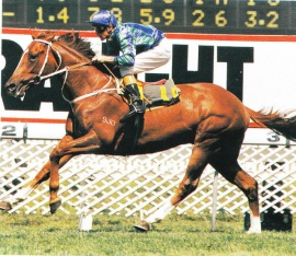 Mardi Gras