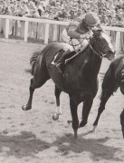 Man Of Vision