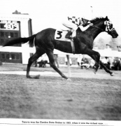 Turn-To winning the 1983 Garden State S. Jim Rafferty - Turfotos