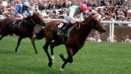Danehill  Willie Carson bts Nabeel Dancer Pat Eddery Cork and Orrery