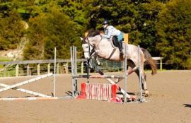 Collette