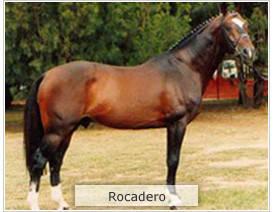 Rocadero