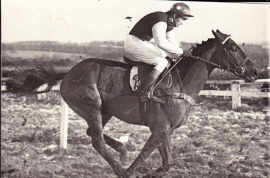 Harnessed Lad