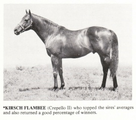 Kirsch Flambee