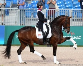 Quantico Ymas International Dressage Star