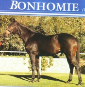 Bonhomie