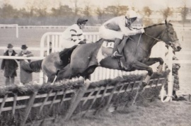 Forcello