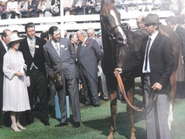 Buttress