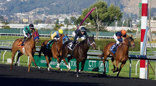 The Greatest Horse Races in the World
