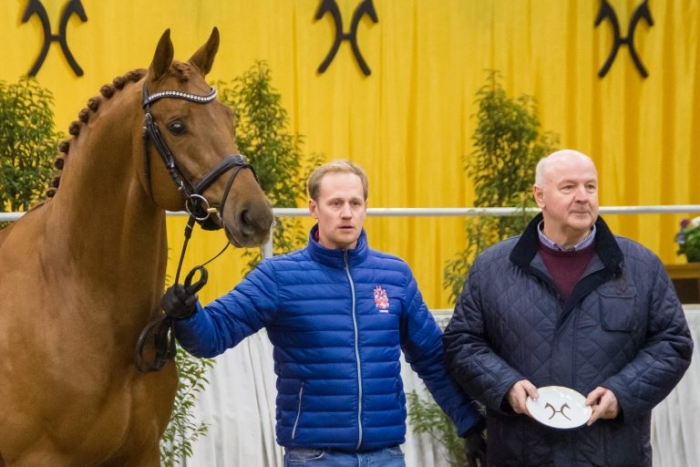 Best young Hanoverian stallions awarded with the Weltmeyer and Stakkato Prizes