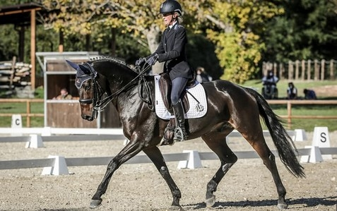 Eventer Robbed of National Title Due to Error in Dressage Results