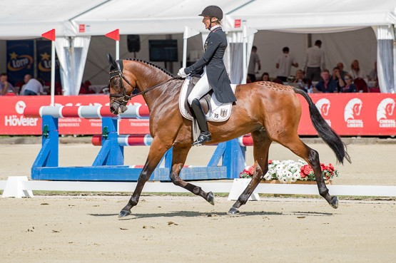World record total puts Germans out in front after dressage