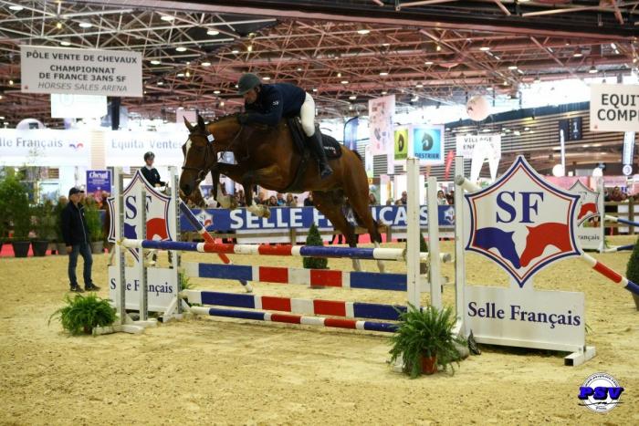 EYTON DE LIAM, Champion des 3 ans Sport Selle Français