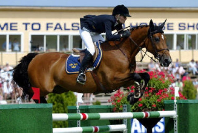 Great Showjumping mare Butterfly Flip has passed away