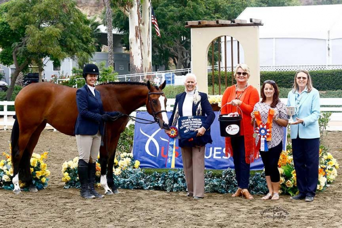 Just Remember, 2017 West Coast Best Young Horse Champion (Captured Moment Photography)
