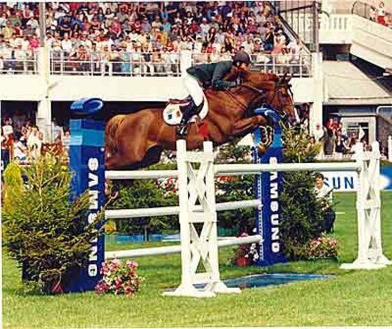 Luidam at Dublin Horse Show