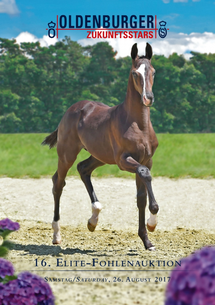 Oldenburg Elite Foals Online