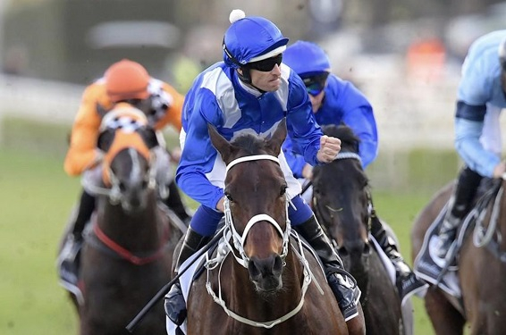Waller Saluted for Winx's Jaw-Dropping Feats | SporthorseData