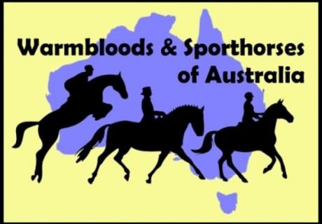 Warmbloods & Sporthorses of Australia
