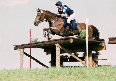 SJA Sport Horses