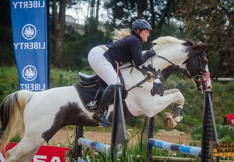 Ruach Pinto Sport Horses
