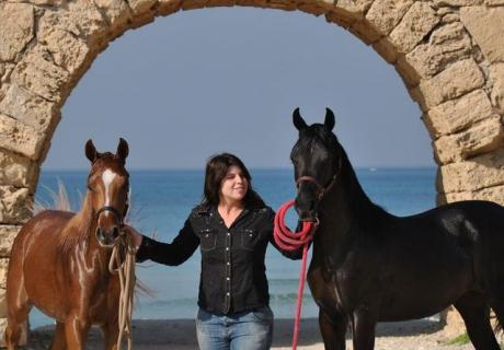 Dan Arabians