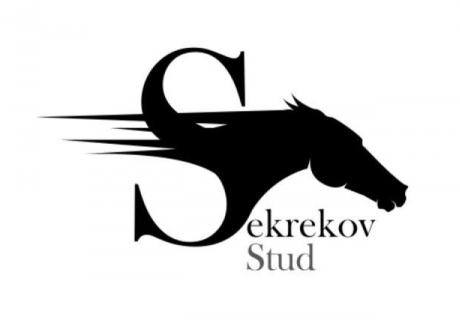 Sekrekov Stud
