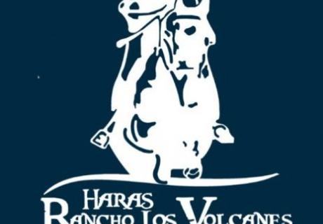 Haras Rancho Los Volcanes