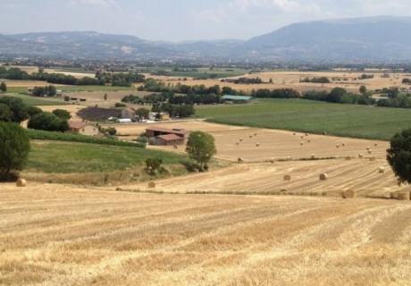 Scuderia Del Biancospinio