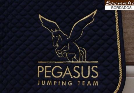 Pegasus Jumping Team