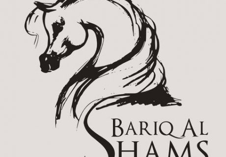 Bariq AL Shams Arabian Stud