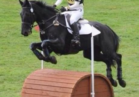 Biscovellets Sport Horses