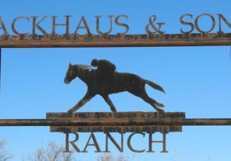 Backhaus & Sons