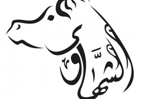Al Shahawy Arabians