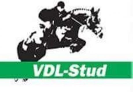 VDL Stud
