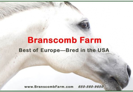 Branscomb Farm