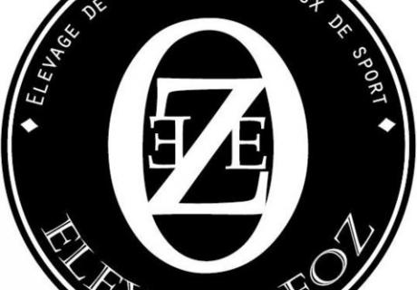 Elevage Eoz - Eoz stud