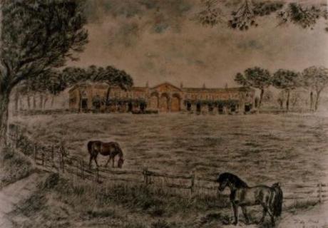 Azienda Agricola Castel Lombardo