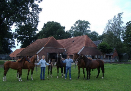 Southbrook Stables