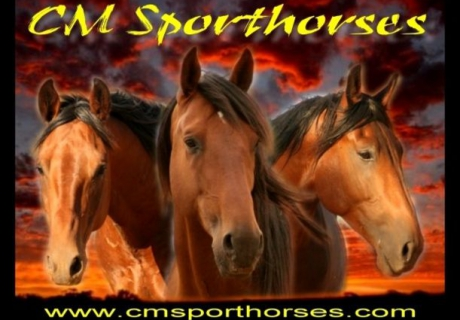 CM Sporthorses