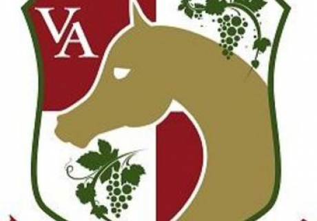 Vineyard Arabians