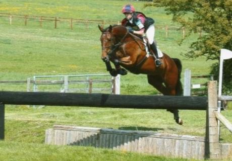 Cuffesgrange Sport Horses