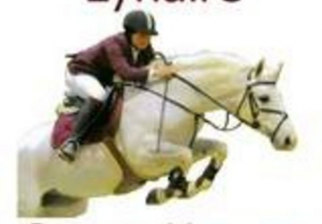 Lynaire Sports Horse Stud