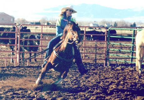 Double Starz Ranch