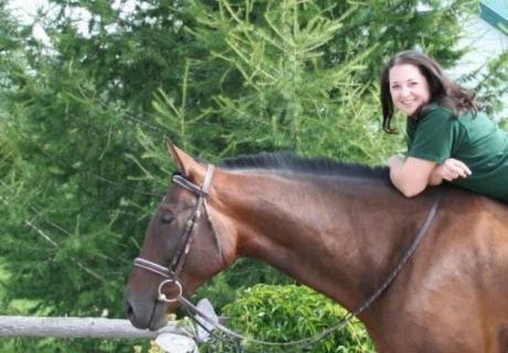 Shimmer-E Equestrian