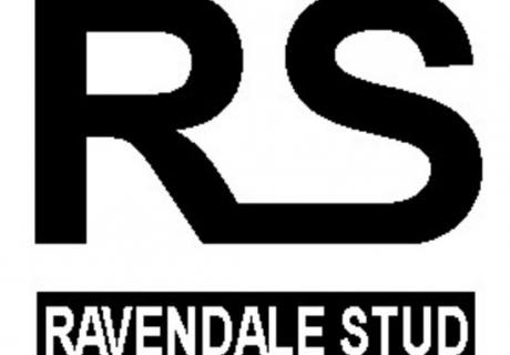 Ravendale Stud