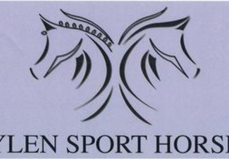 Sylen Sport Horses
