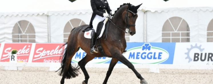 Germans scoop top four placings in FEI Dressage World Cup™ qualifier.