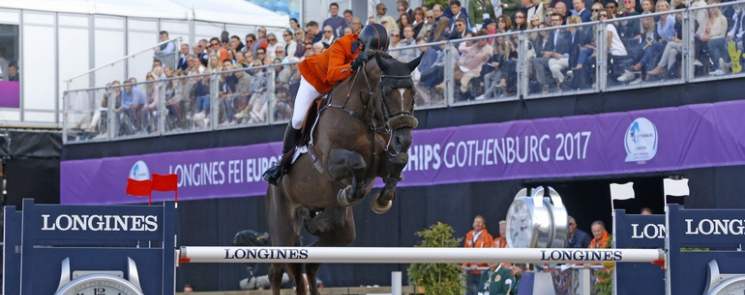Don VHP Z crowned Horse of the Year 2017 in Belgium